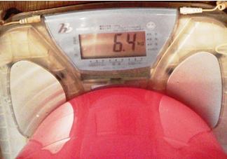 マルチイオナイザー容器含む重量 6.4kg